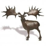 Elk by Anthony Scott: Irish art at The Greenlane Gallery
