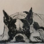French Terrier by Heidi Wickham