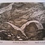 Fothair na Manach by Tomás O'Cíobháin