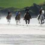 Beach canter by Dingle Horse Riding