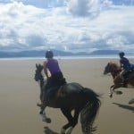 Elaine and Elsie by Dingle Horse Riding