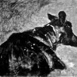 Thursday Cow II by Heidi Wickham