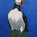 Puffin by Michael Flaherty