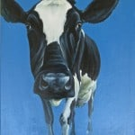 Moo on Blue by Liza Kavanagh
