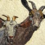 Goats – Original by Annabel Langrish