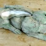 Moss by Lynne Stratton