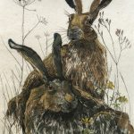 Two Hares – Limited Edition Print by Annabel Langrish