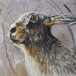 Hare Profile – Limited Edition Print by Annabel Langrish