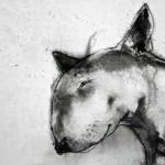 Bull Terrier I by Heidi Wickham