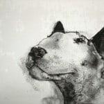 Bull Terrier III by Heidi Wickham
