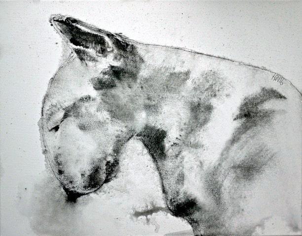 Bull Terrier IV, 40 x 50 cm