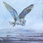 Bawn Owl Hunting by Annabel Langrish