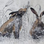 brown-hares