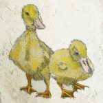 Ducklings by Annabel Langrish