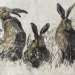 flick-of-hares