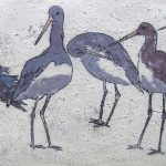 Godwits – Limited Edition Prints by Annabel Langrish