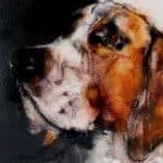 Beagle II by Heidi Wickham