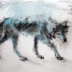 Mayo Wolf IV by Margo Banks