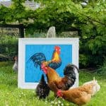 Henry on blue – art in nature -living art. by Michael Flaherty: Irish art at The Greenlane Gallery