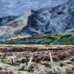 Fence in the Bog by Michael Flaherty: Irish art at The Greenlane Gallery