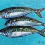 Atlantic Mackerel by : Irish Art by Greenlane Gallery Dingle